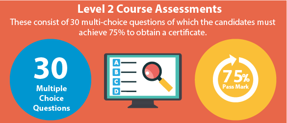 Level 2 Assessment Process